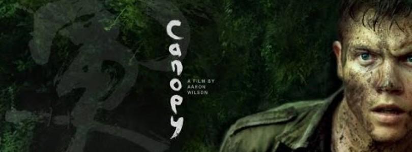 DVD Canopy