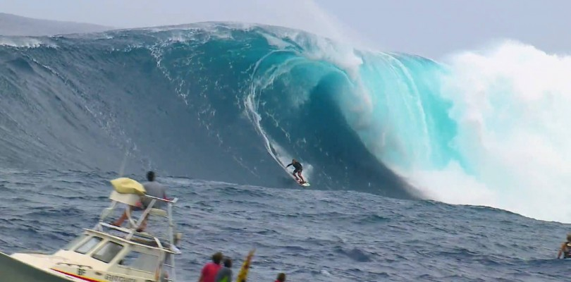 DVD Red Bull Young Jaws