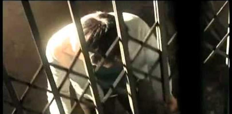 DVD Satsujin Douga Site 2