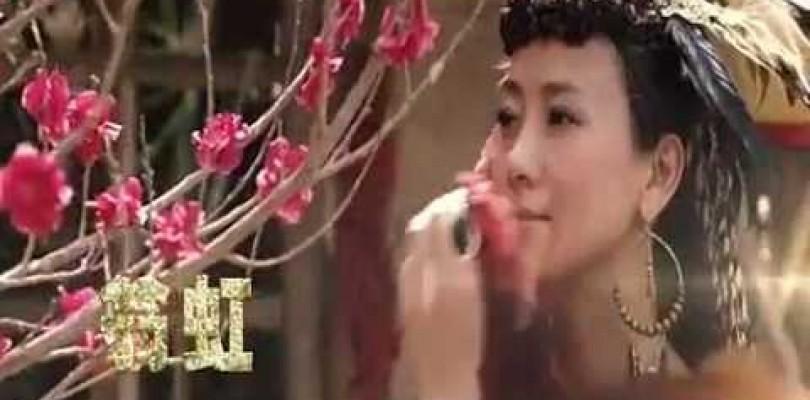 DVD Shuang cheng ji zhong ji