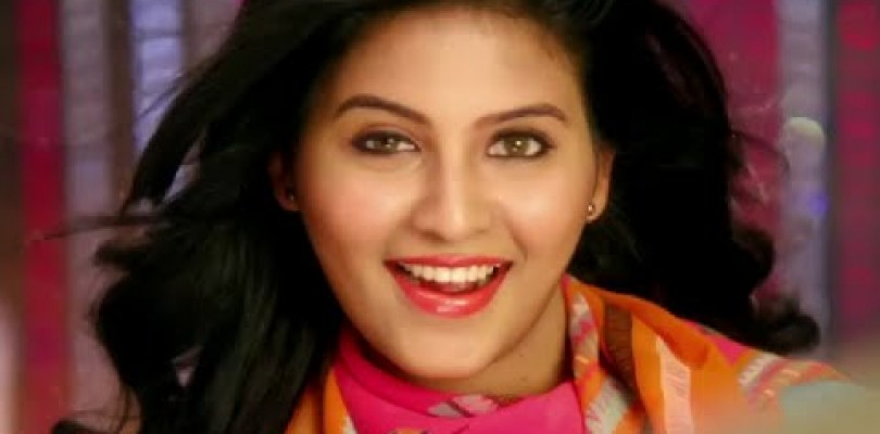 DVD Anjali