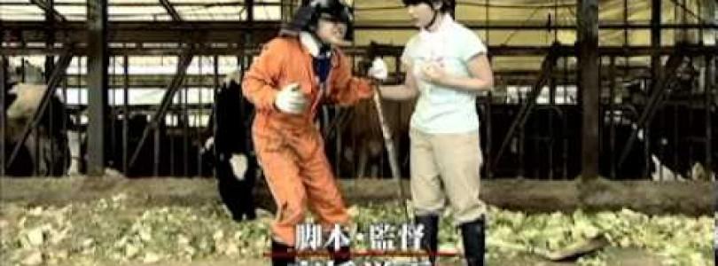 DVD Ishi no furu oka