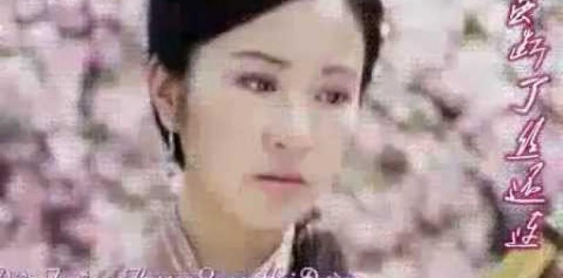 DVD Jiang Ai