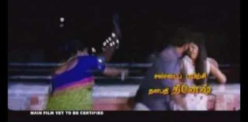 DVD Krishna Leelai