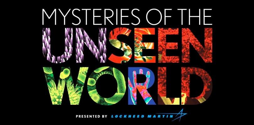 DVD Mystery World