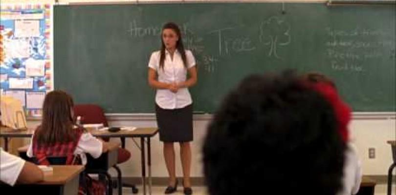 DVD Señora Maestra