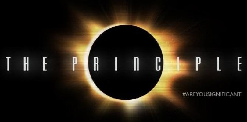 DVD The Principle